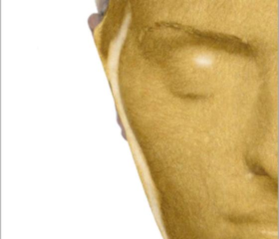 ゴールドマスク 2080<br>(エナジーチャージ)